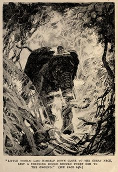 'The Jungle Book' by Rudyard Kipling. Illustrated by John Lockwood Kipling, W.H. Drake and P. Frenzeny. Caption - 'Little Toomai Laid himself down close to the great neck, lest a swinging bough should sweep him to the ground.' Elephant. http://www.amazon.com/gp/product/1473327814/ref=as_li_tl?ie=UTF8&camp=1789&creative=9325&creativeASIN=1473327814&linkCode=as2&tag=reaboo09-20&linkId=3L6YQIKYY3GHLN3W