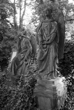 Olsanské-Friedhof Prag (28)