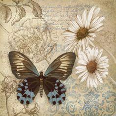 Jardim de borboletas I Posters por Conrad Knutsen na AllPosters.com.br