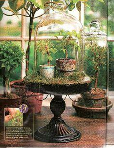 http://www.englishcreekgardens.com/images/Magazines/BHG_Garden_Ideas_Outdoor_Living_2007_Pg66.jpg