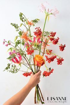 Smart Floral inspiration on Monday - Lisanne van de Klift - Smart Floral inspiration on Monday – Lisanne van de Klift - Flower Power, My Flower, Flower Vases, Flower Art, Love Flowers, Wild Flowers, Beautiful Flowers, Viburnum Opulus, Modern Flower Arrangements