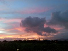 Sunset shades ..