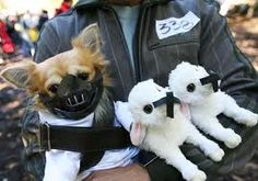 Silence of the Lambs dog costume. That's one sinister dog.