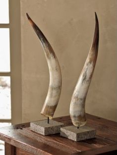 no horns allowed on the wall, but I could go for horns as table top decor Bull Horns, Cow Horns, Texas Longhorns, Viking Decor, British Colonial Style, Longhorn Cow, Interior Decorating, Interior Design, Western Decor