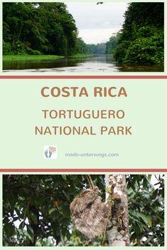 Aus meinem #Reisetagebuch #CostaRica: Nur per Boot oder Flugzeug ist der #Tortuguero #National Park (#parquenacionaltortuguero) zu erreichen. Da es außergewöhnlich viel geregnet hat, konnte ich meine Seele in der #mawambalodge baumeln lassen. #Reisebericht #naturfoto #naturliebhaber #landschaft #naturliebe #spaziergang #amstrand #abendstimmung #traveldiaries #traveling #beautifulplaces #nature #mothernature #landscape