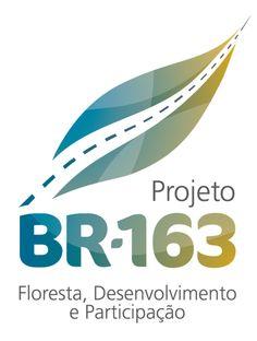 No comando do Ministério do Meio Ambiente no primeiro governo Lula, Marina Silva teve no plano 'BR-163 Sustentável' a principal tentativa para evitar o desmatamento causado por estradas na Amazônia. O governo federal lançou no dia 5 de junho de 2006 o Plano de Desenvolvimento Regional Sustentável para a Área de Influência da Rodovia BR-163, mais conhecido como Plano BR-163 Sustentável. Uma área de 1,232 milhão de km2, que inclui 79 municípios dos Estados do Pará, Mato Grosso e Amazonas.