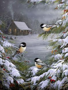 Winter scape with black capped chickadees