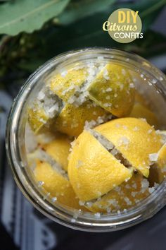 DIY : FAITES VOS CITRONS CONFITS ! - Blog Coconut - Cuisine | Foodisterie | Home-Made