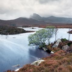 Windy morning at Rannoch Moor, Highlands of Scotland