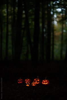 Scary Halloween Pumpkins in the Forest at Dusk by Mosuno backgrounds wallpapers halloween art Halloween Town, Halloween Fotos, Scary Halloween Pumpkins, Spooky Scary, Halloween Pictures, Happy Halloween, Halloween Decorations, Halloween Crafts, Vintage Halloween