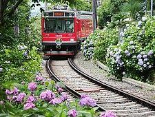 EASTERN JAPAN: HAKONE hakone tozan railway|botanical garden|hakone art museum|gora park|lake ashinoko|