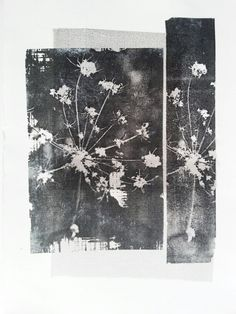 Lesley Warrington Monoprint Www.facebook.com/lesley warringtonartist
