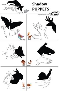 shadow puppets                                                                                                                                                                                 More
