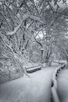 Central Park covered by snow, New York City (by Ron Diel) You are in the right place about New York reise tipps Here we offer you the most beautiful pictures about the New York apartment you are looking for. When you examine the Central Park c Winter Schnee, Snow Scenes, Winter Beauty, Winter Pictures, Winter Landscape, Landscape Photos, Landscape Photography, Central Park, Belle Photo