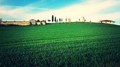 IMG_20140511_113752 (1) Vineyard, Outdoor, Camino De Santiago, Outdoors, Vine Yard, Vineyard Vines, Outdoor Games, The Great Outdoors