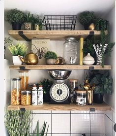 Bathroom Shelves, Kitchen Shelves, New Kitchen, Kitchen Dining, Kitchen Ideas, Room Kitchen, Kitchen Decor, Dining Room, Scaffold Boards