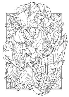 Decorate your house with your own colored flowers! I post a free for all, ready to print, personally drawn by me picture of irises. Image available in JPG and PDF. Download, print in a convenient size (up to A3 or more). When you finish your painting, frame it and decorate your home!  You can use it for FREE (not for commercial purposes!) #handdrawn #free #coloring