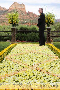 Rose petal aisle with dramatic Arizona background? Yes Please.