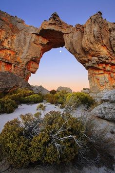 The Arch of The Cederberg Mountains, Cape Town South Africa. One of the best hiking area around Cape Town. Perfect for nature lovers. Visit South Africa, Cape Town South Africa, Places To Travel, Places To See, Places Around The World, Around The Worlds, Le Cap, Photos Voyages, Africa Travel