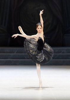 a day of ballet - Svetlana Zakharova as Odile in Nureyev's Swan Lake. Svetlana Zakharova, Ballet Art, Ballet Dancers, Ballerinas, Shall We Dance, Just Dance, Modern Dance, Ballet Bolshoi, Swan Lake Ballet