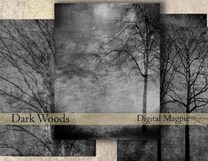 Digital paper pack trees dark woods black grey white creepy spooky printable download digital scrapbook papers forest monotone