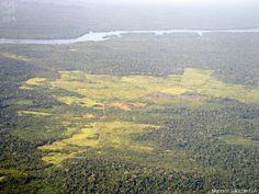 Após três décadas de luta, TI Cachoeira Seca do Iriri é homologada | Vista aérea da Terra Indígena Cachoeira Seca, na Terra do Meio (PA) |