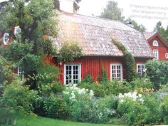 This cottage looks like the one which belonged to Liv's sister Sigrid south of Oslo. We stayed there several times when we visited Norway. It was like a picture-book cottage! Very charming. And the yard had many flower gardens.