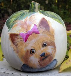 Yorkie Faux Hand Painted pumpkin  Cool