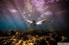 Friend's underwater engagement pic in Hawaii