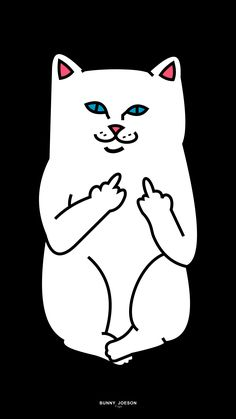 RIPNDIP                                                                                                                                                                                 More