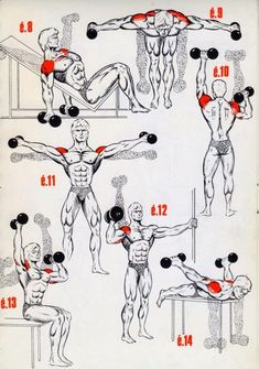This a simple exercises for the beginings bodybuilding ~ fitness bodybuilding