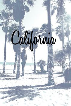 Find images and videos about summer, beach and sea on We Heart It - the app to get lost in what you love. Cali Girl, California Dreamin', California Pictures, Strand, San Diego, San Francisco, Beautiful Places, Surfing, Places To Visit