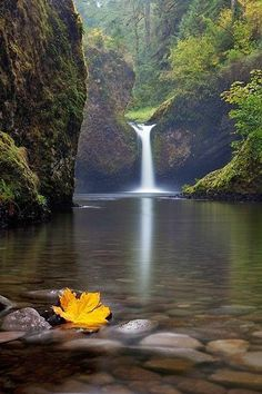 Punch Bowl Falls is a waterfall on Eagle Creek in the Columbia River Gorge National Scenic Area, Oregon, United States. Columbia River Gorge, Take Better Photos, Beautiful Waterfalls, Belleza Natural, Best Photographers, Landscape Photos, The Great Outdoors, Mother Nature, Nature Nature