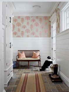 Shiplap Accent Wall Google Search Home Renovation 2015