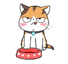 Soidow Cat Animated(Eng) by MJ_Cartoon Animated Emojis, Animated Cartoon Characters, Cartoon Gifs, Animated Cartoons, Animated Gif, Cute Cartoon Images, Cute Images, Kittens Cutest, Cute Cats