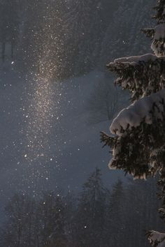 Winter Szenen, I Love Winter, Winter Magic, Mery Chrismas, Wallpaper Aesthetic, Snow Scenes, Snow And Ice, All Nature, Winter Beauty