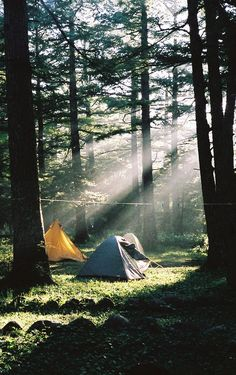 tents and sunlight and woodsmoke