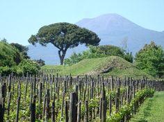 Mount Vesuvius // BK's 30th Bday Excursion