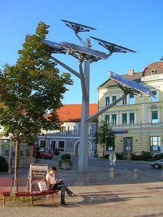 "A solar panel ""tree"" #sustainable #energy"