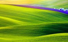 Dean Stevenson - Amazing spring backround - 3840x2400 px