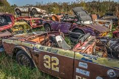 Hidden away in an overgrown corner of a private airfield lay this amazing graveyard of vintage British sports cars, where classic marques including Triumph Spitfires, TR4s and TR6s had been reduced to derelict rusting hulks.