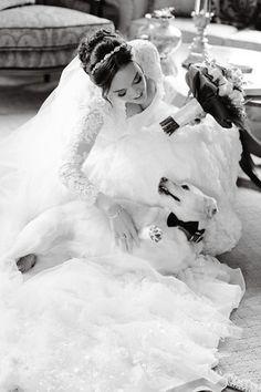 ring bearer, wedding dog, bowtie, bride, love, lace, wedding, bride, bridal bouquet, fall wedding