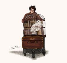 HP aşk