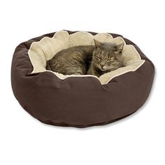 Kitty Bed