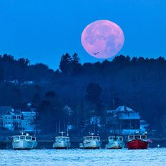 Amazing super moon over the Scarborough River, Maine