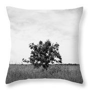 Tree Among the Grasses Throw Pillow by Inspired Arts