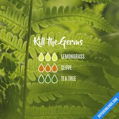 Kill the Germs - Essential Oil Diffuser Blend
