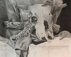 Skull Still Life 2017 Charcoal Still Life Drawing, Drawing S, Bull Skulls, Petrified Wood, Wallpaper S, Psychedelic, Surrealism, Charcoal, Digital Art