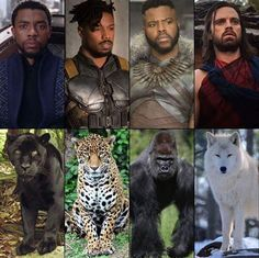 Spirit animals of Wakanda!