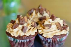 chocolate peanut butter cupcakes -- brownie cake, peanut butter frosting, Reese's topping